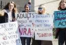 Schools Not Guns