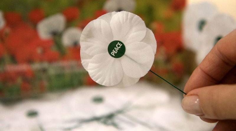 white poppy peace pledge union