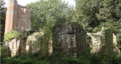 The Church Of England's Garden of Nonconformist Weeds